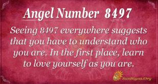 8497 angel number