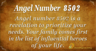 8502 angel number