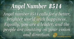 8514 angel number
