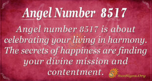 8517 angel number