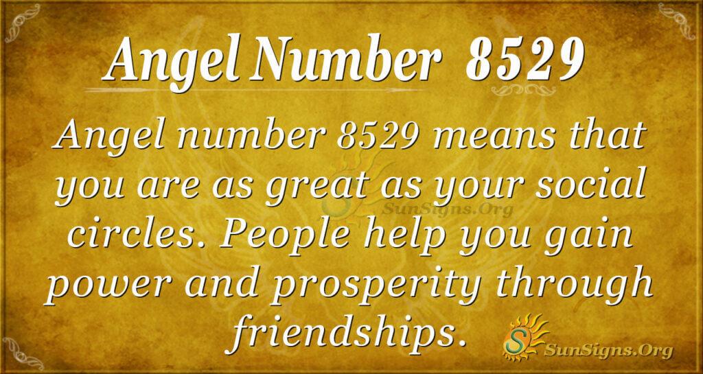 8529 angel number