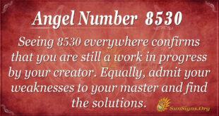 8530 angel number
