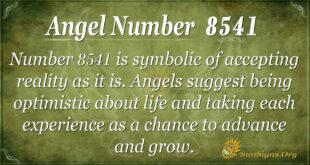 8541 angel number