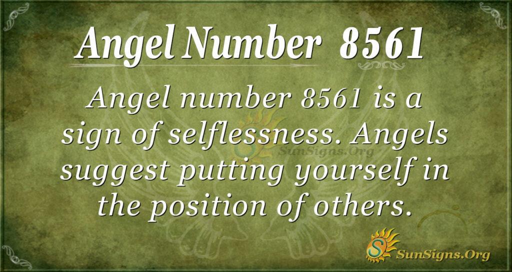 8561 angel number
