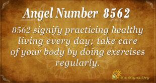 8562 angel number