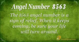 8563 angel number