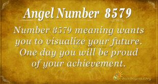 8579 angel number