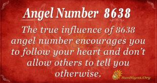 8638 angel number
