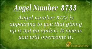 8733 angel number