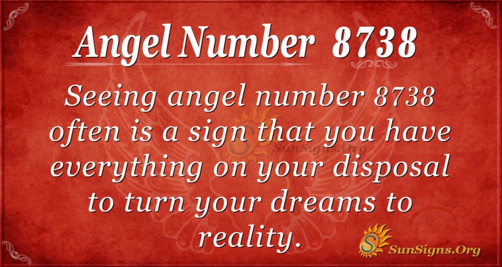 8738 angel number