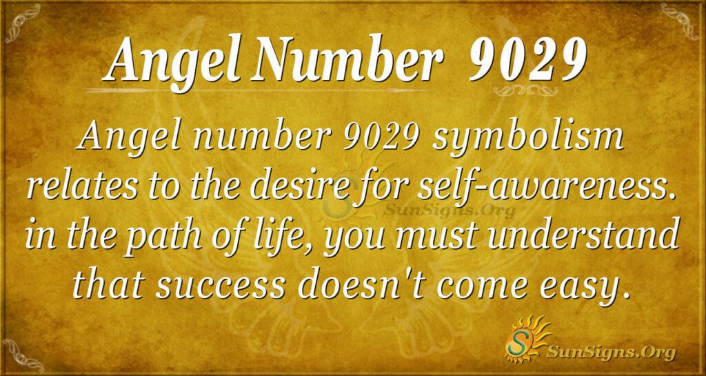 9029 angel number