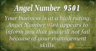 9501 angel number