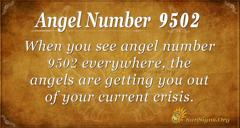 9502 angel number