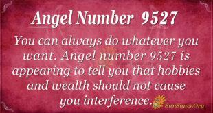 9527 angel number