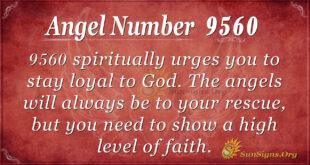 9560 angel number