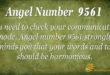 9561 angel number