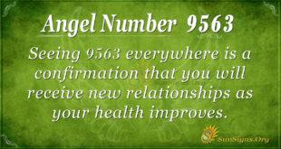 9563 angel number