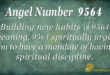 9564 angel number