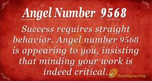 9568 angel number
