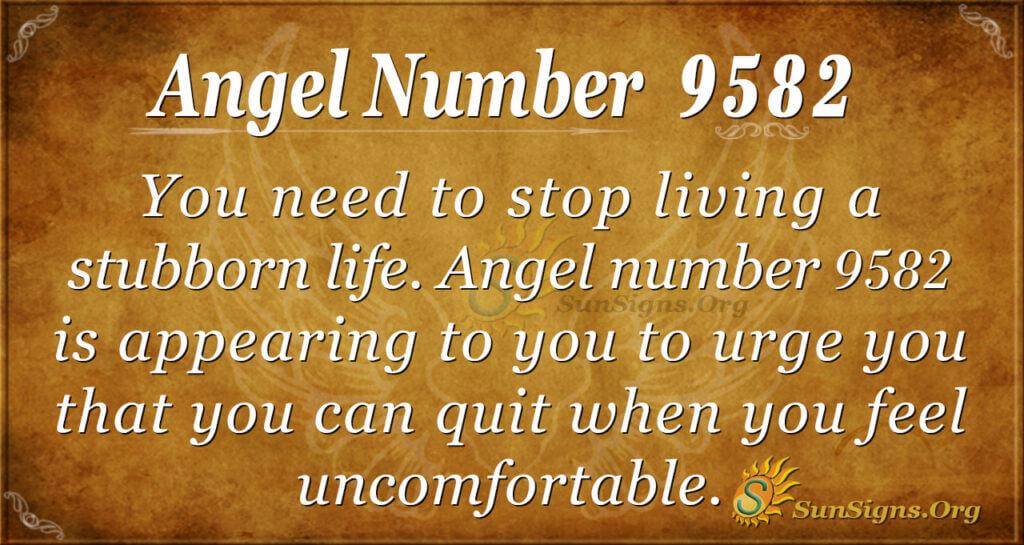9582 angel number