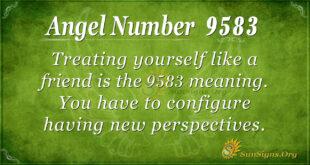 9583 angel number