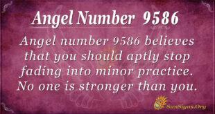 9586 angel number