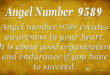 9589 angel number