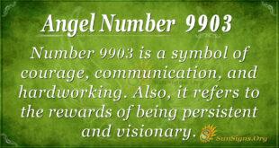 9903 angel number