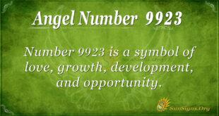 9923 angel number