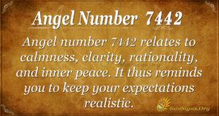7442 angel number
