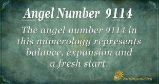 9114 angel number