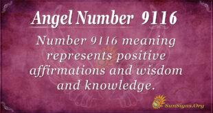 9116 angel number