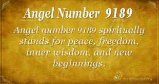 9189 angel number