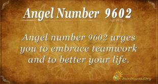9602 angel number