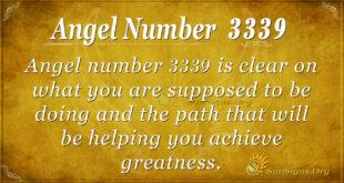 3339 angel number