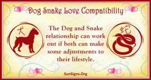 dog snake compatibility