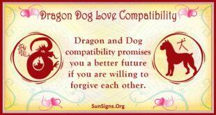 dragon dog compatibility