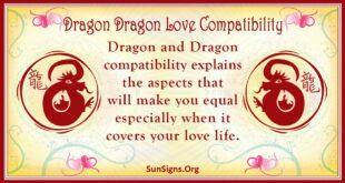 dragon dragon compatibilit