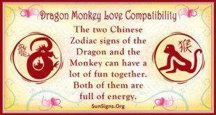 dragon monkey compatibility