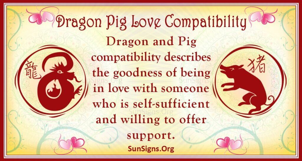 dragon pig compatibility