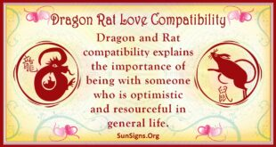 dragon rat compatibility
