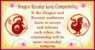 dragon rooster compatibility