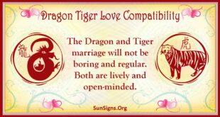 dragon tiger compatibility