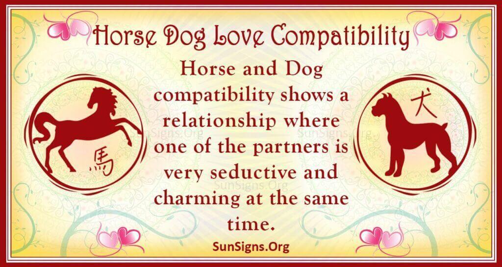 horse dog compatibility