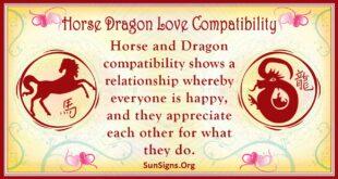horse dragon compatibility