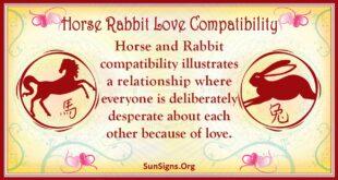 horse rabbit compatibility
