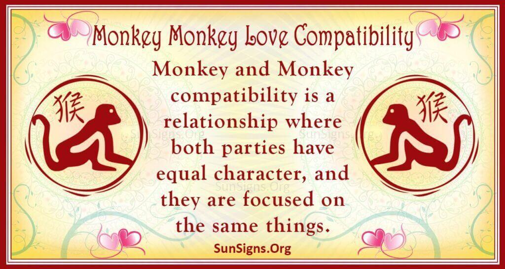 monkey monkey compatibility