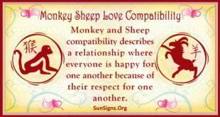 monkey sheep compatibility