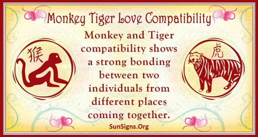 monkey tiger compatibility