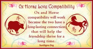 ox horse compatibility